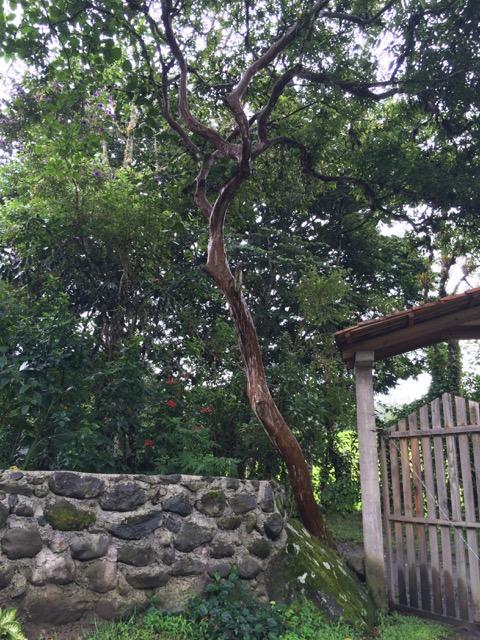 Entrance Gate to El Refugio Intag