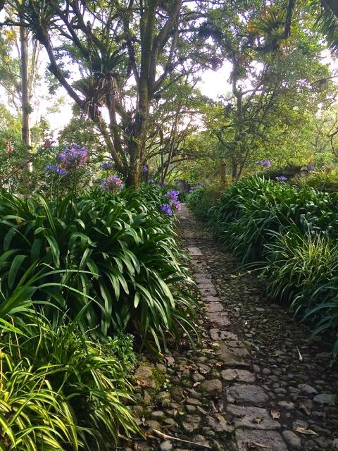Garden walk at Hacienda Cusin