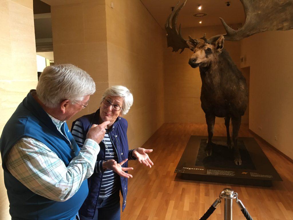 Museum of Prehistoric Art - Les Eyzies France